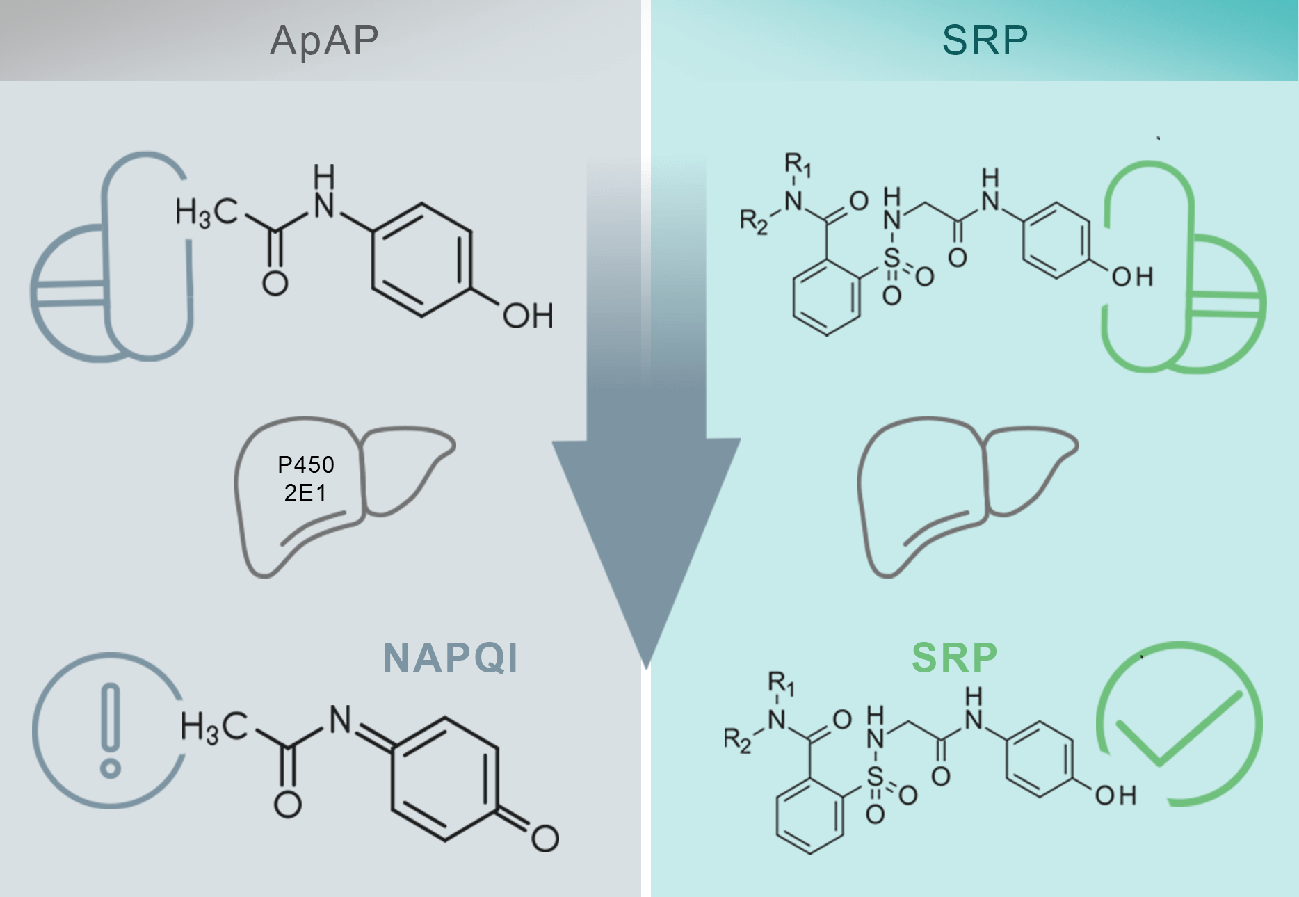 ApAP and SRP Chart